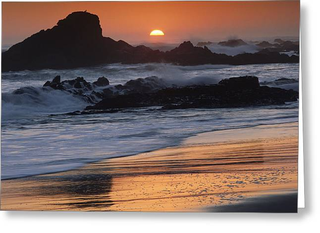 Big Sur Beach Greeting Cards - Crashing Surf On Rocks At Sunset Point Greeting Card by Tim Fitzharris