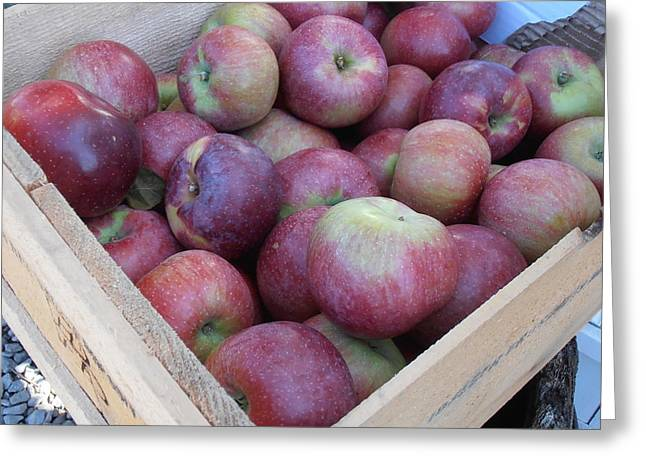 Crate Of Apples Greeting Card by Kimberly Perry
