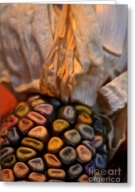 Crazee Corn Colors Greeting Card by Susan Herber