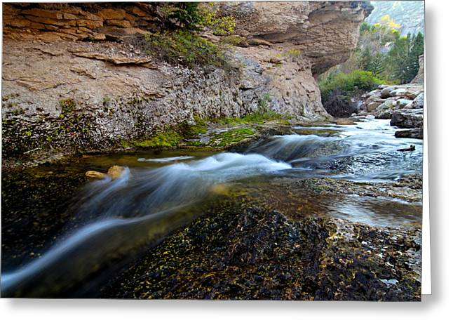 Lhr Images Greeting Cards - Crazy Woman Creek Greeting Card by Larry Ricker