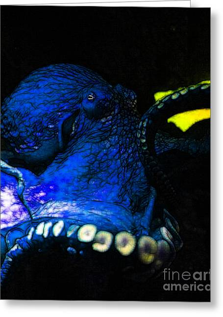 Mediterranian Greeting Cards - Creatures of The Deep - The Octopus - v6 - Blue Greeting Card by Wingsdomain Art and Photography