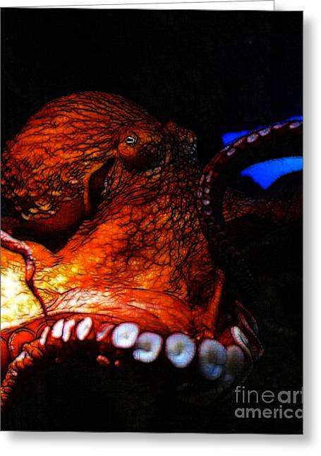 Burmuda Greeting Cards - Creatures of The Deep - The Octopus - v6 - Orange Greeting Card by Wingsdomain Art and Photography