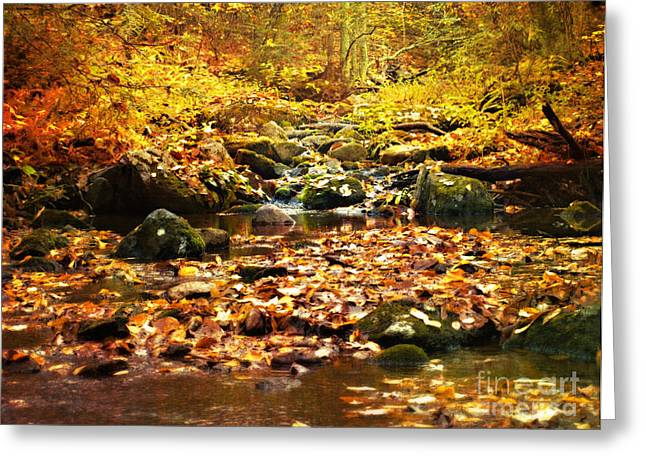 Creek In The Woods Greeting Card by Kathy Jennings