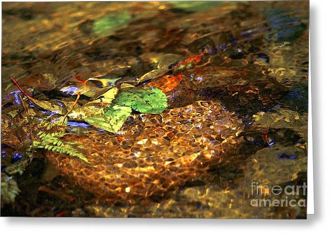 Water In Creek Greeting Cards - Creekside Greeting Card by Sharon  Talson