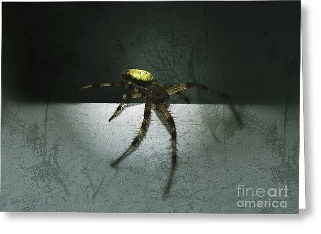 Creepy Spider Greeting Card by Christy Bruna