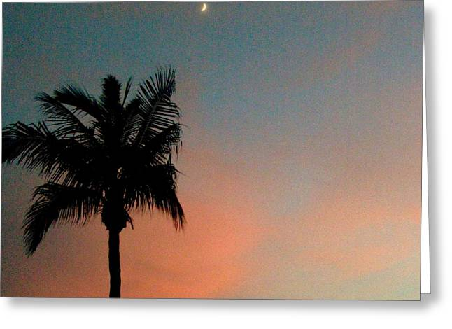 Gloaming Greeting Cards - Crescent Moon Sunset Palm Greeting Card by Christine Sullivan Cuozzo