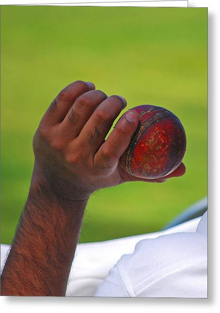 Germantown Cricket Club Greeting Cards - Cricket Anyone Greeting Card by Lisa  Phillips