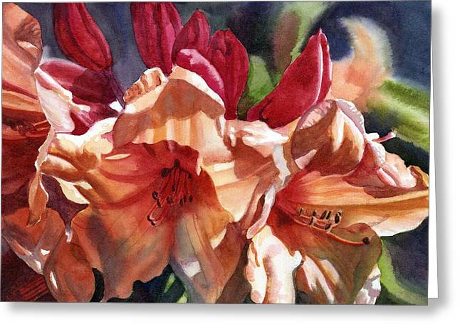 Rhododendron Greeting Cards - Crimson And Bronze Rhododendron Greeting Card by Sharon Freeman