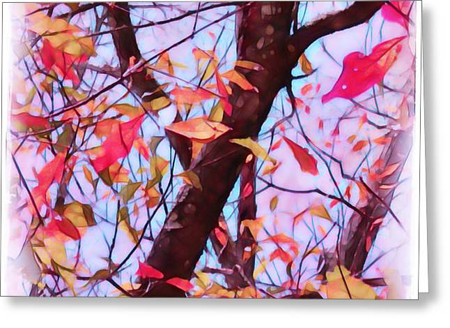 Crisp Autumn Day Greeting Card by Judi Bagwell
