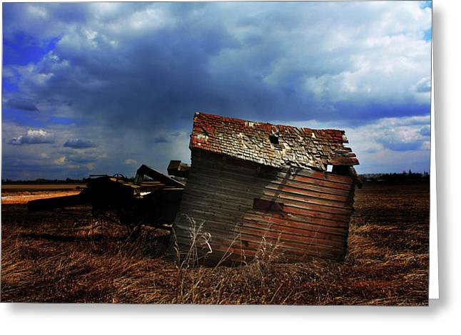 Edmonton Photographer Greeting Cards - Crooked Breeze One Greeting Card by Jerry Cordeiro