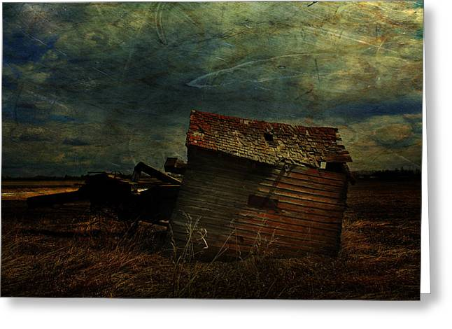 Canada Photograph Greeting Cards - Crooked Breeze Revisited  Greeting Card by Jerry Cordeiro