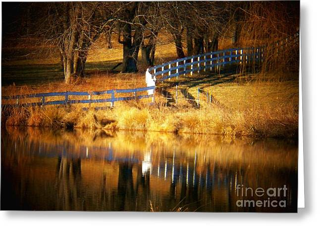 Northern Virginia Greeting Cards - Crooked Fence Greeting Card by Joyce Kimble Smith