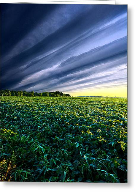 Crossing Over Greeting Card by Phil Koch