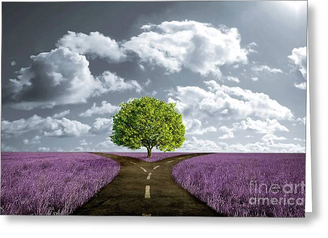 Undecided Greeting Cards - Crossroad in lavender meadow Greeting Card by Giordano Aita