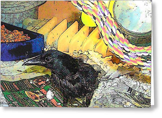 Crow in Rehab Greeting Card by YoMamaBird Rhonda