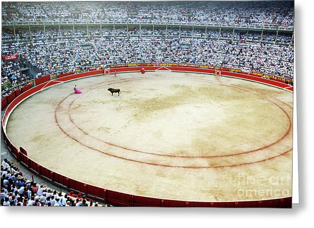 Crowds watching a bullfight during the July San Firmin fiesta in Pamplona Greeting Card by Sami Sarkis