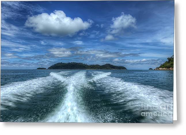 Straits Of Malacca Greeting Cards - Cruising Greeting Card by Adrian Evans