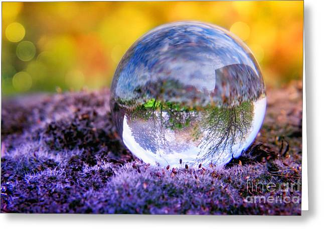 Reflex Greeting Cards - CRYSTAL BALL - In the moss II Greeting Card by Viaina