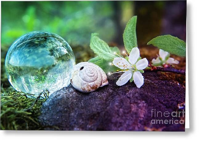 Green Transparency Greeting Cards - CRYSTAL BALL - In the moss Greeting Card by Viaina