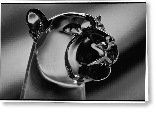 Washington State University Digital Art Greeting Cards - Crystal Cougar Greeting Card by David Patterson