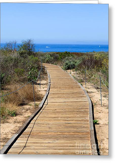 California State Park Beach Greeting Cards - Crystal Cove State Park Wooden Walkway Greeting Card by Paul Velgos