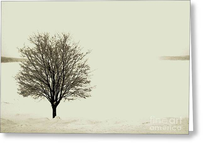 Snowy Day Mixed Media Greeting Cards - Crystal Lake in Winter Greeting Card by Desiree Paquette