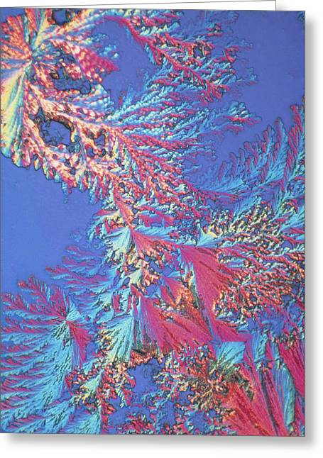 Lm Greeting Cards - Crystals Of Adrenalin Hormone Greeting Card by David Parker