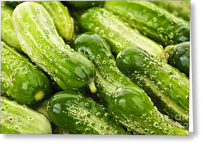 Produce Greeting Cards - Cucumbers  Greeting Card by Elena Elisseeva