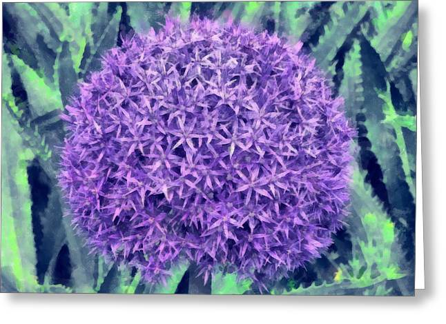 Cultivated Alium Greeting Card by Chris Thaxter