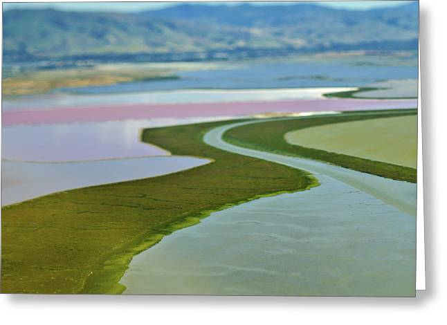 Floodplain Greeting Cards - Cultivated Floodplains Greeting Card by Eddy Joaquim