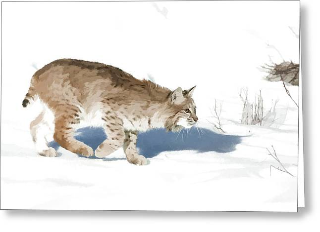 Bobcat Greeting Cards - Cunning Cat Feet Greeting Card by Dewain Maney