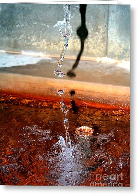 Curative Water Greeting Card by Sascha Meyer