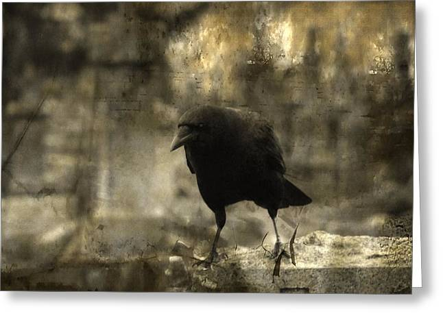 Ravens In Graveyard Greeting Cards - Curiosity Greeting Card by Gothicolors Donna Snyder