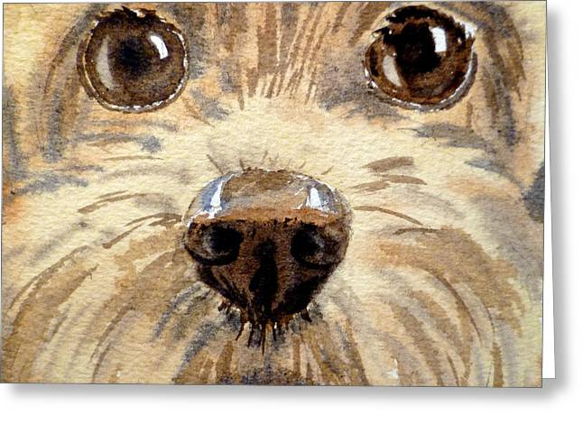 Dog Portraits Greeting Cards - Curiosity Greeting Card by Irina Sztukowski