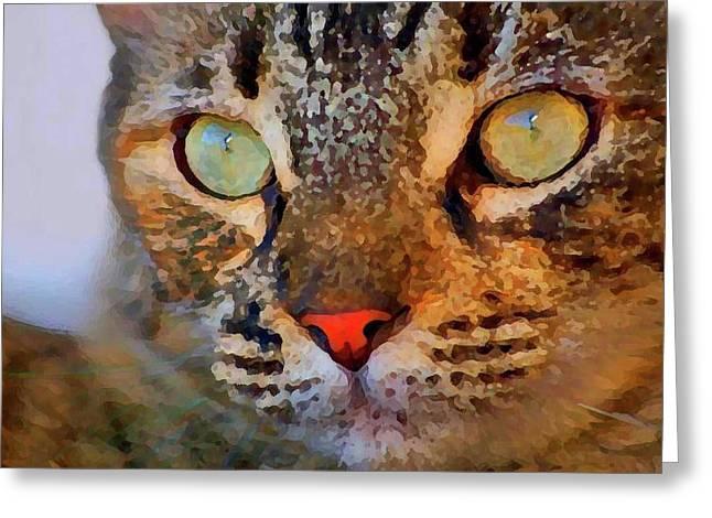 Kitten Prints Mixed Media Greeting Cards - Curious Cat Closeup  William Kaluta Artist Greeting Card by William Kaluta