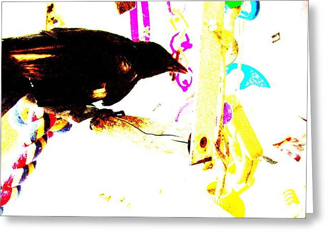 Yomamabird Rhonda Greeting Cards - Curious Crow Greeting Card by YoMamaBird Rhonda