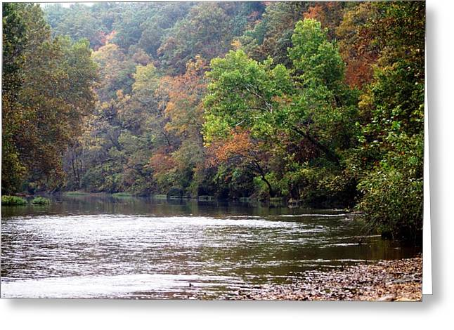 Marty Koch Greeting Cards - Current River 1 Greeting Card by Marty Koch