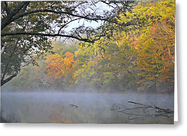 Current River Fall 44r Greeting Card by Marty Koch