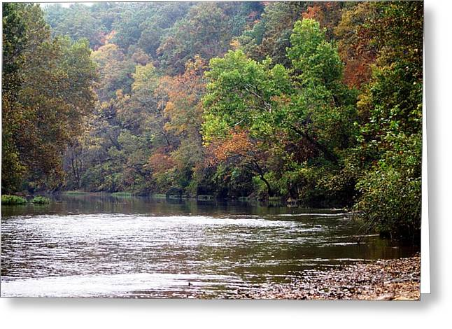 Marty Koch Greeting Cards - Current river Fall Greeting Card by Marty Koch