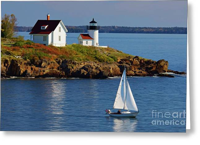 Lobster Bouys Greeting Cards - Curtis Island Lighthouse - D002652b Greeting Card by Daniel Dempster