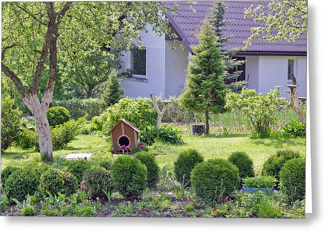 Doghouse Greeting Cards - Curve doghouse on the lawn Greeting Card by Aleksandr Volkov