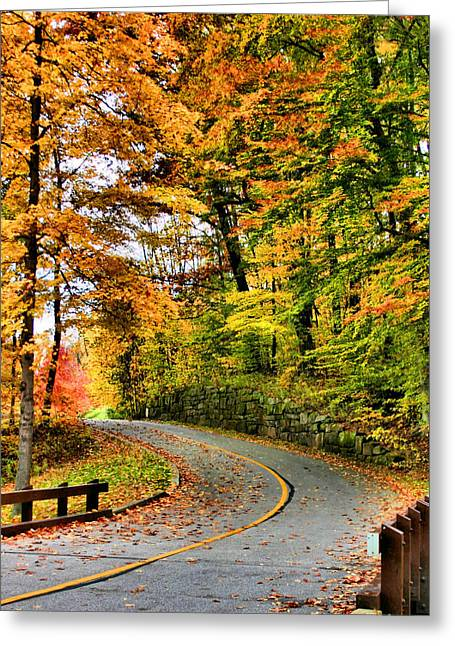 Akron Greeting Cards - Curve in the Road Greeting Card by Kristin Elmquist