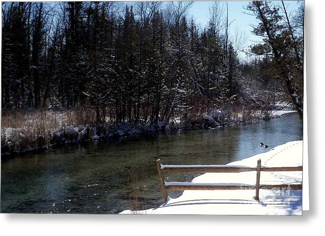 Desiree Paquette Mixed Media Greeting Cards - Cut River in Winter with Ducks Greeting Card by Desiree Paquette