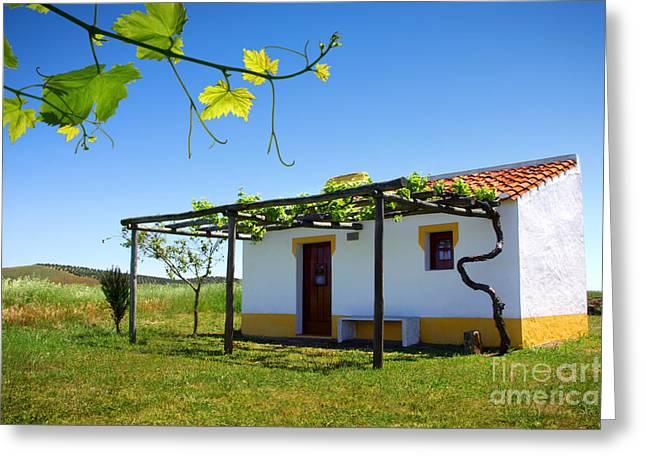 Cute House Greeting Card by Carlos Caetano