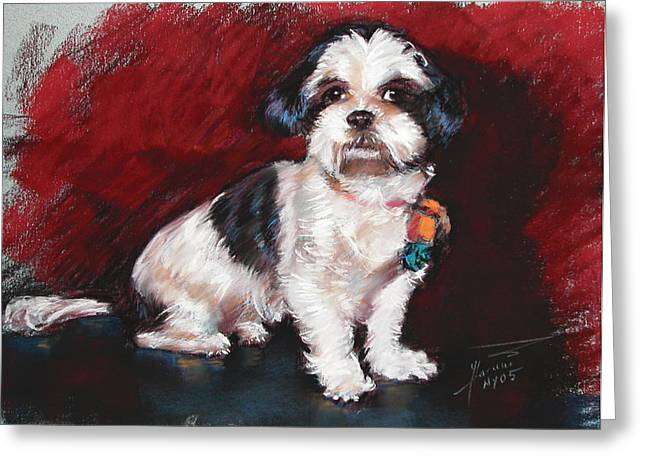 Terrier Pastels Greeting Cards - Cutie Greeting Card by Ylli Haruni