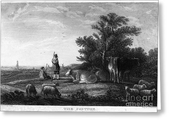 Shepherd Staff Greeting Cards - Cuyp: The Pasture Greeting Card by Granger