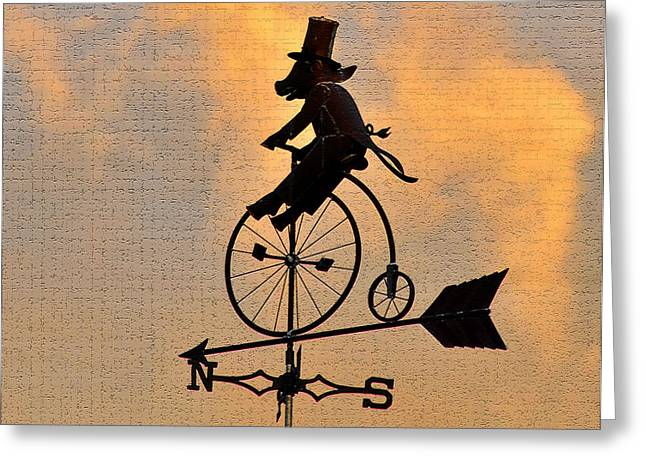 Wind Vane Greeting Cards - Cycling Pig Greeting Card by David Lee Thompson