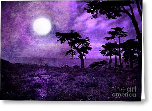 Fantasy Tree Art Greeting Cards - Cypress Trees at Sutro Heights Greeting Card by Laura Iverson