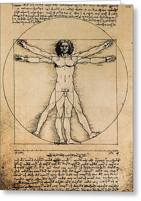 Proportions Greeting Cards - Da Vinci Rule Of Proportions Greeting Card by Science Source