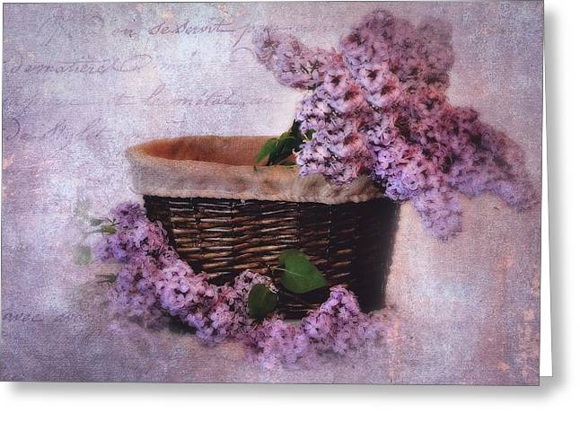 Lilac Greeting Cards - Daddys Lilacs Series V Greeting Card by Kathy Jennings
